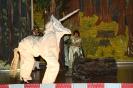 Märchen 2009 'Das tapfere Schneiderlein'