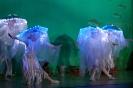 Märchenspiel 'Arielle, die kleine Meerjungfrau'_20
